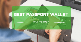 Best Passport Wallets & Passport Holders for Travel Reviews