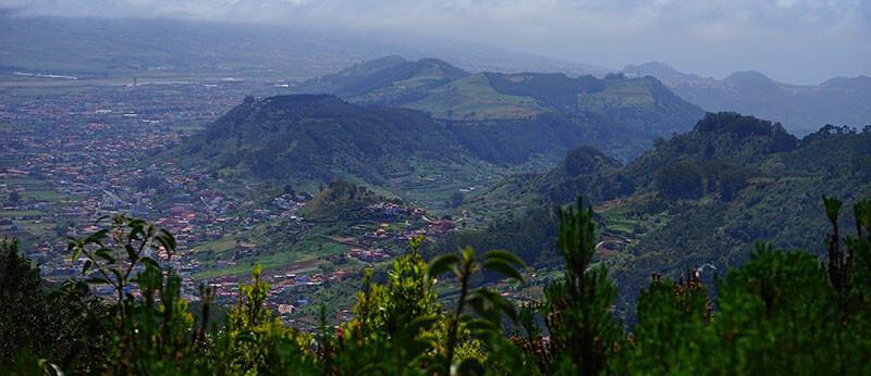 where to stay for singles, couples San Cristobal de la Laguna tenerife