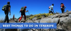 What are the Best Things To Do In Tenerife
