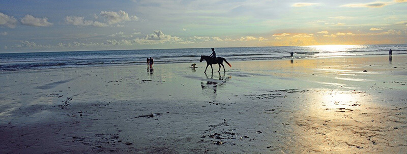 Where  is the Best Area to Stay in Bali: Jimbaran