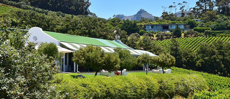 Where to Stay in Cape Town: Constantia