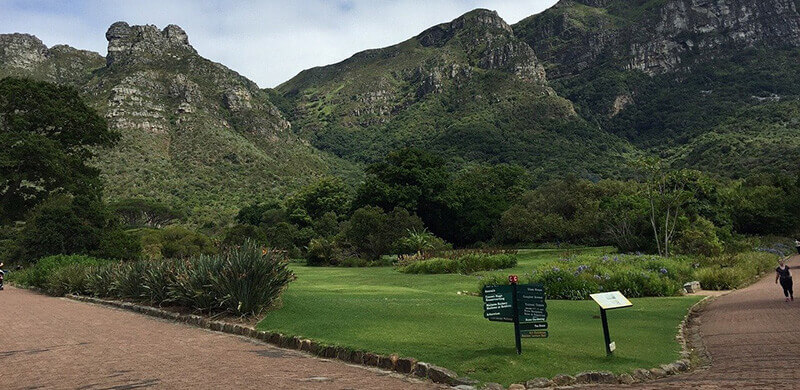 Where to Stay in Cape Town: Newlands